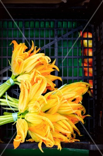 A bunch of courgette flowers on a market stand in Italy