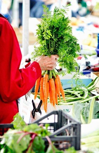 A person holding a bunch of carrots at a market stand