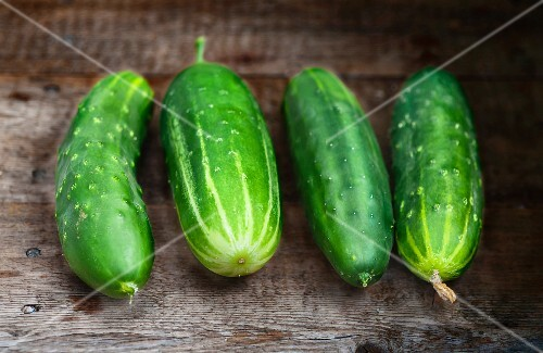Four cucumbers on a wooden surface