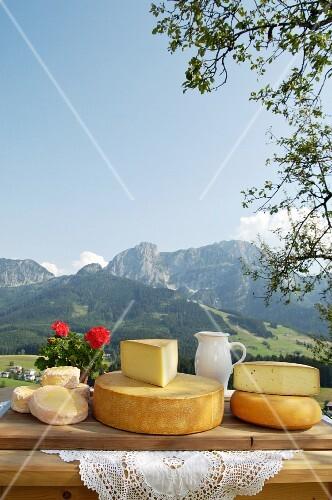A cheese platter from Salzburg, Austria (Schmierkäse, Bergkäse, Almkönig and Bierkäse)