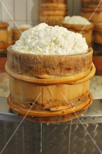Montafoner cream cheese in a wooden barrel in a dairy