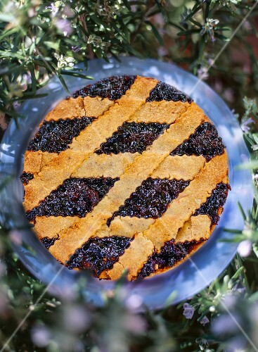 Linzertorte (nut and jam layer cake) in a garden seen from above