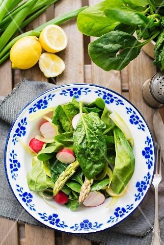 Frische Salatzutaten auf Teller (Draufsicht)