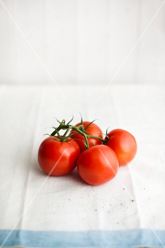 Vine tomatoes on a white tea towel with a light-blue edge