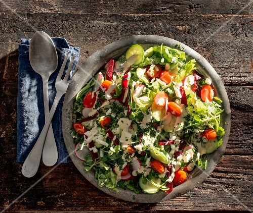 Mixed leaf salad with tomatoes, radishes and cucumber