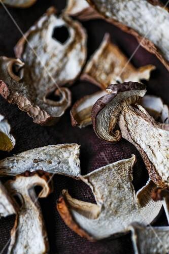 Air-dried porcini mushrooms