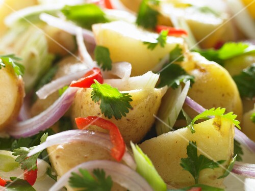 Potato salad with red onions, coriander and chillis (close-up)