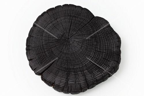 A slice of acacia wood tree trunk