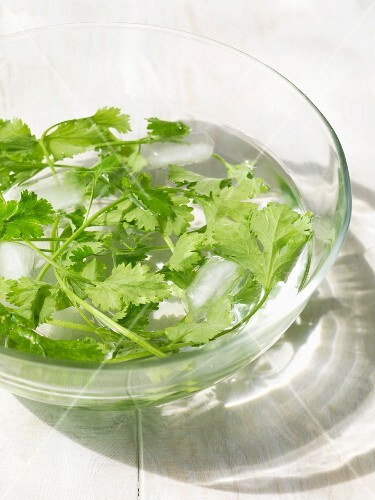 Coriander leaves in a bowl of water