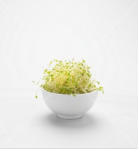 A bowl of alfalfa sprouts