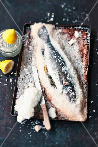 Sea bass with a salt crust