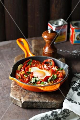 Schakschuka (eeg dish with pepper and tomatoes, North Africa)