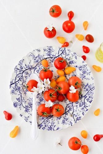 Grape tomatoes, cherry tomatoes and white cherry blossom