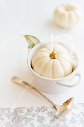 A mini white pumpkin in a soup bowl