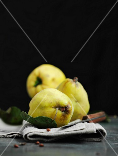 Three quinces on a linen cloth with a knife