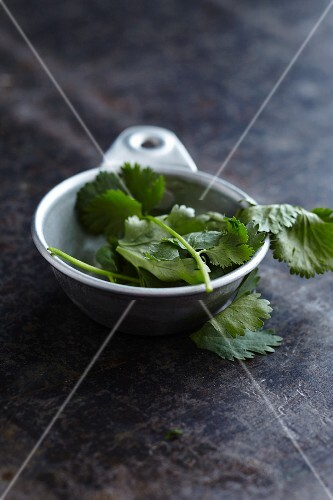 A bowl of fresh coriander leaves