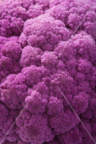 Purple cauliflower (full frame)