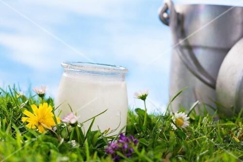 A jar of yoghurt in a flowering meadow