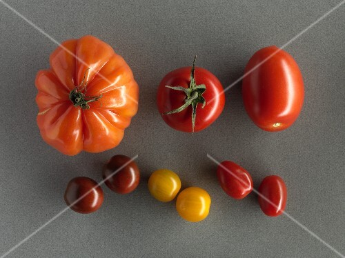Various different tomatoes on a grey surface
