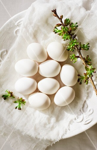 White eggs and a sprig of flowers on a cloth