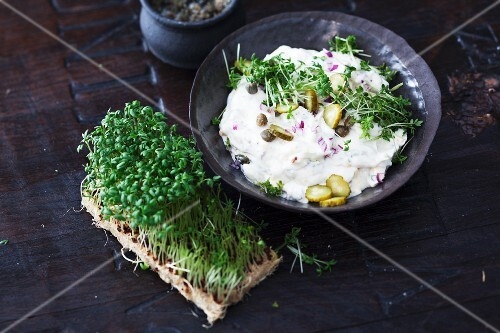 Cress remoulade with capers and gherkins to be served with raclette
