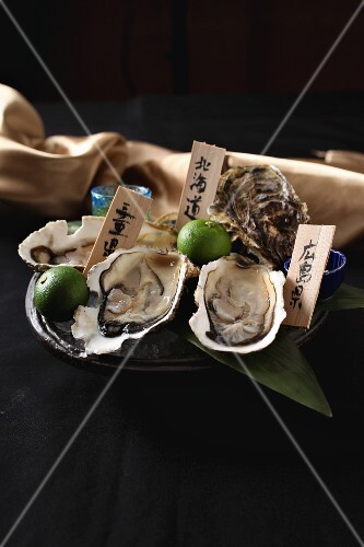 Fresh Japanese oysters