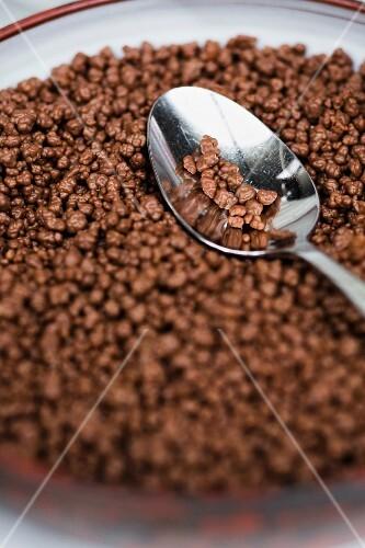Chocolate rice crispies