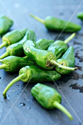 Pimientos (green chilli Peppers) on a grey surface