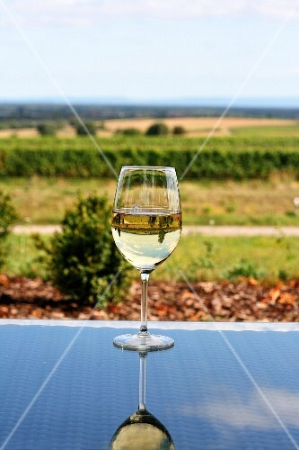 A glass of white wine on a glass table with a view over a summery landscape