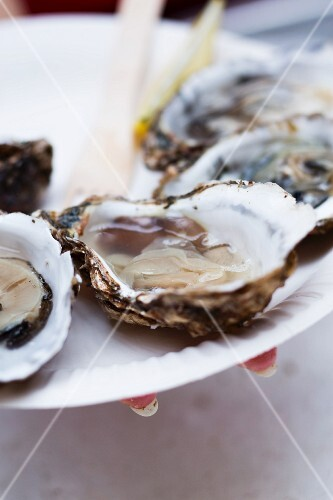 A hand holding a plate of fresh oysters