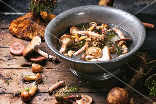 Fresh wild mushrooms with an old bowl filled with water on a wooden table