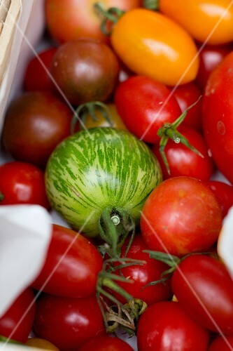 A colourful selection of tomatoes in a crate