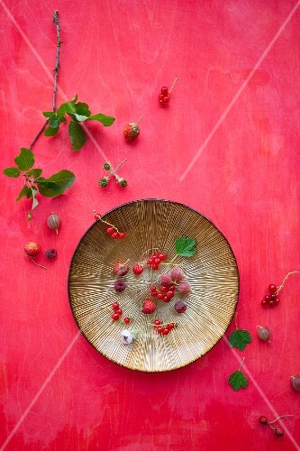 Raspberries, redcurrants, gooseberries and wild strawberries on a plate