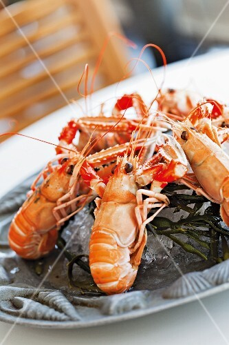 Langoustines in a seafood restaurant in Padstow on the coast of Cornwall