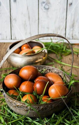 Fresh brown chickens eggs in a metal basket