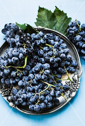 Blue grapes on a metal plate
