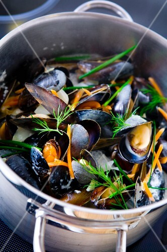 Mussels with dill in a pot