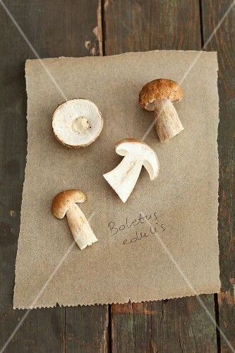 Porcini mushrooms on a piece of paper