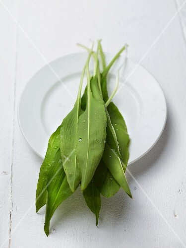 Fresh wild garlic on a plate
