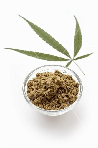 A bowl of protein-rich hemp powder