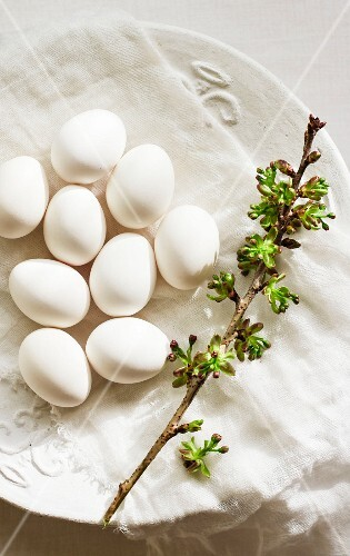 White eggs and a sprig on a plate with a muslin cloth