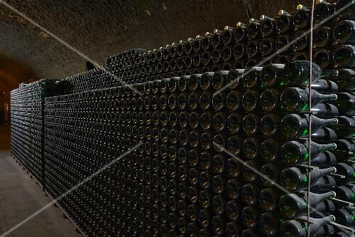 Old wine bottles in metal racks in a vaulted cellar