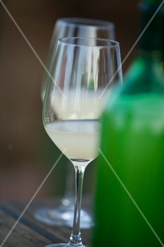 Glasses of Federweisser (a cloudy beverage in the process of fermenting, somewhere in between must and wine)