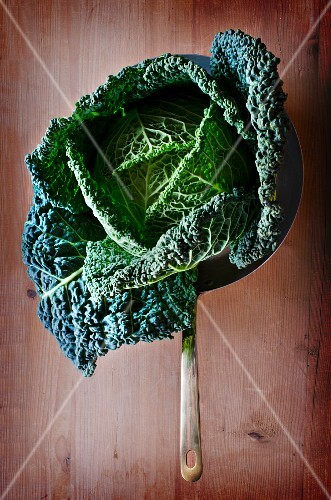 A savoy cabbage in a copper pan