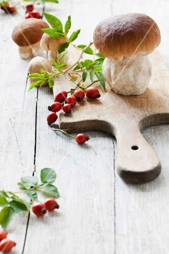 Whole fresh porcini mushrooms with rosehips and leaves on a wooden board and on a wooden surface