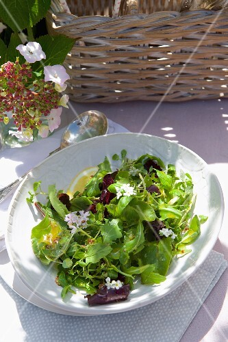 A mixed leaf salad with a mustard dressing and elderflowers for a picnic