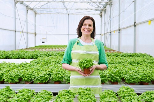 A smiling woman between rows of pot plants