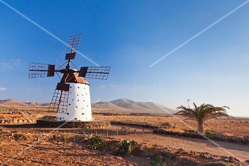 A traditional windmill on Fuerteventura; El Cotillo, Canary islands, Spain