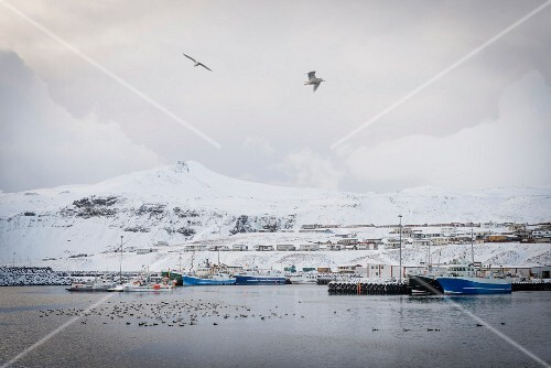 The fishing village of Olafsvik in winter (Snaefellsnes, Iceland)