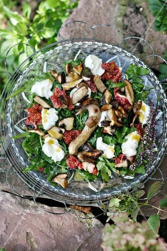 An autumnal salad with rocket, fresh figs, fried porcini mushrooms and buffalo mozzarella